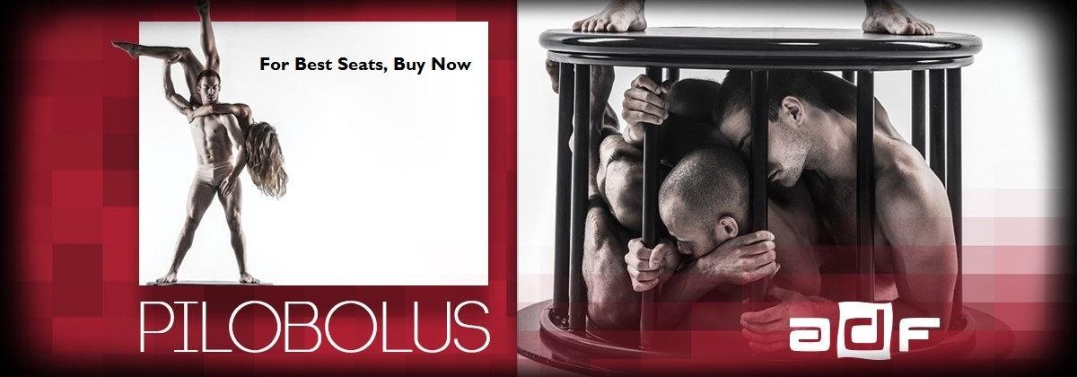 Pilobolus1200x420ForBest.jpg